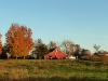 Farm Panoramic