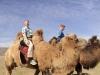More camel rides!